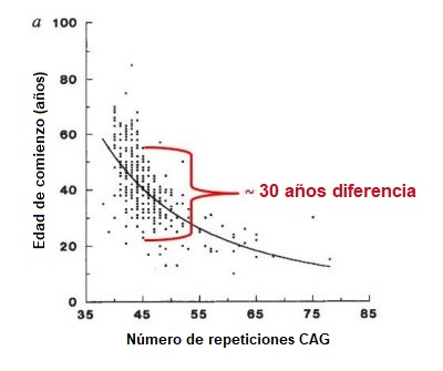 AAO vs CAG